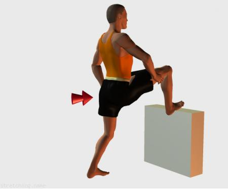Stretching routine recommended for  cycling,  skiing,  triathlon,  martial arts,  legs.