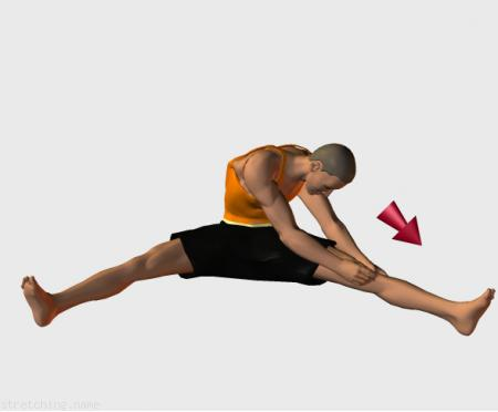 Stretching routine recommended for  dance,  gymnastics,  legs,  adductor.