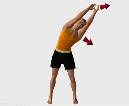 Stretching routine recommended for  dance,  gymnastics,  baseball,  softball,  kitesurfing,  back relax,  intercostal.