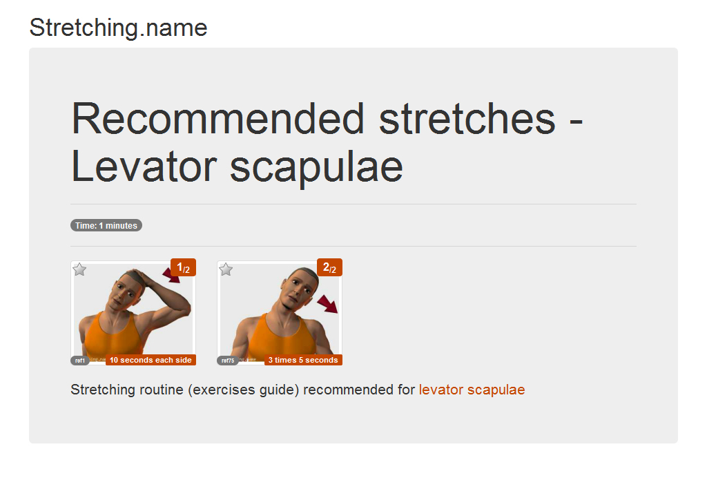 Download stretching posters: Levator scapulae