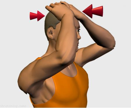 Stretching routine recommended for  boxing,  cervical,  cervicalgia,  isometrics.